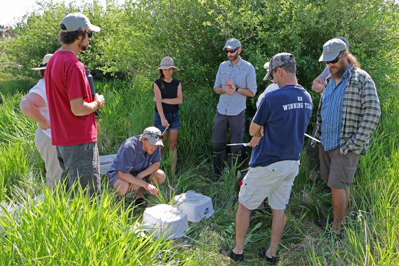 Master Naturalist Watersheds Class